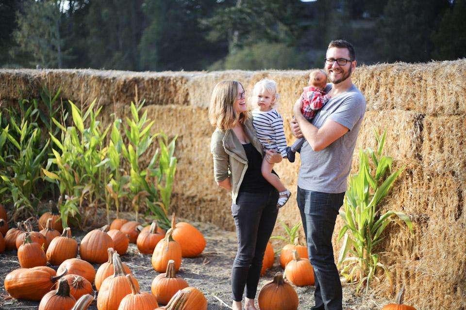 pumpkin-patch-16-11