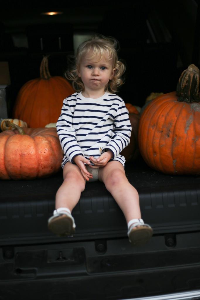 pumpkin-patch-16-47